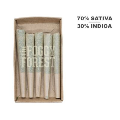 Easy to Buy Fog Cones Preroll in Canada - Cannabis Weed Joints | Sweet Haze AAA+