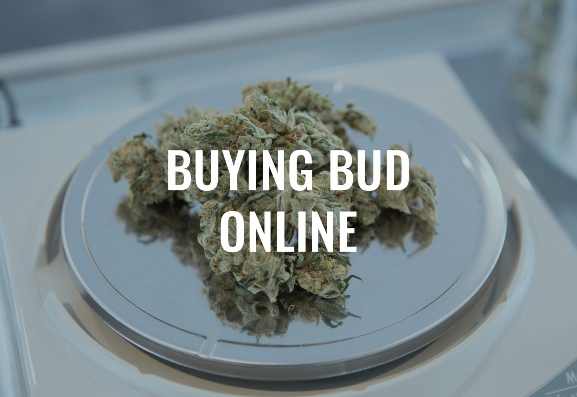 Buying Bud Online in Canada and Buying weed online in Canada